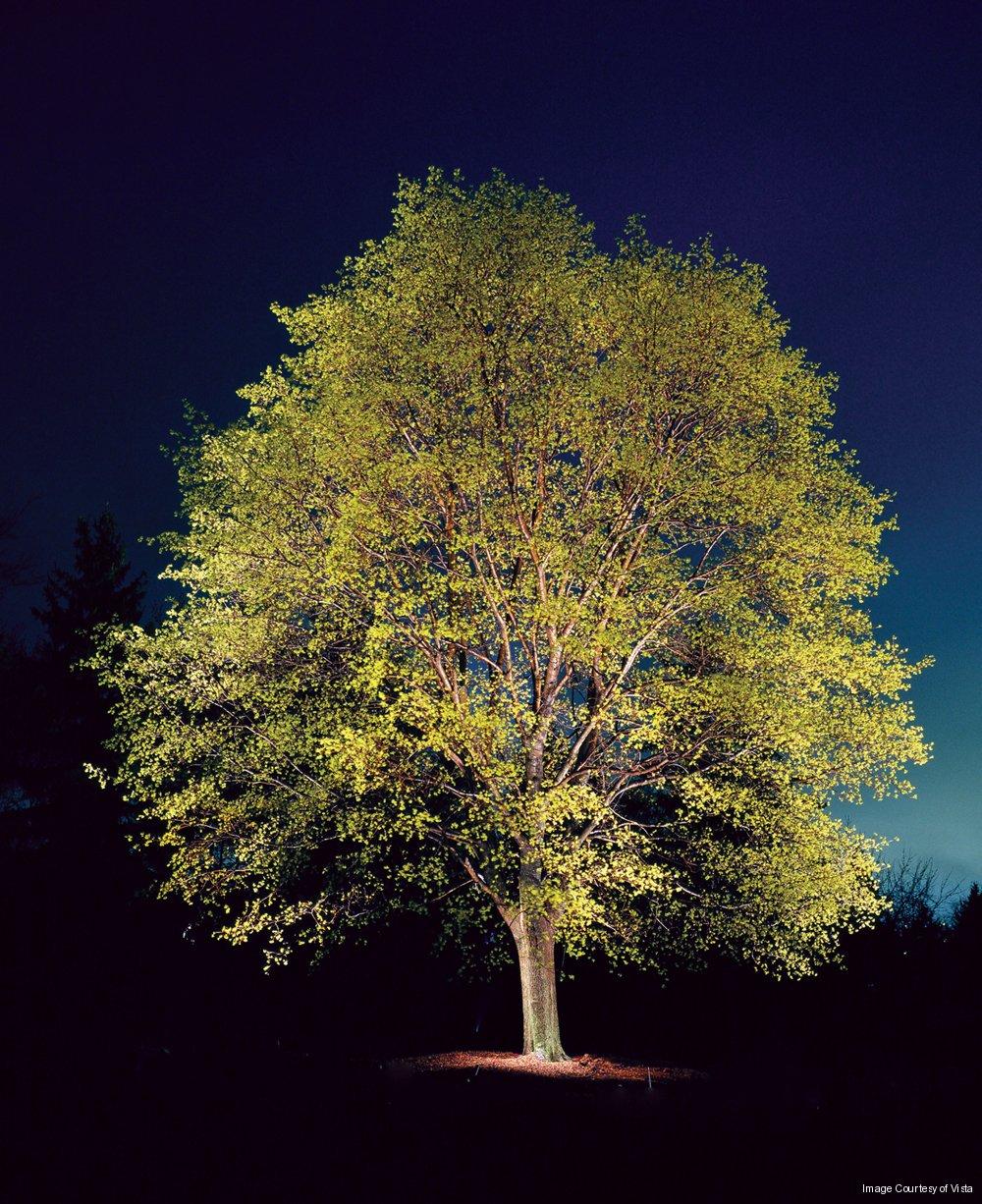 Outdoor lighting company uplighting mirror lighting for Outdoor lighting companies